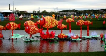 Подорож до New York Chinese Lantern Festival